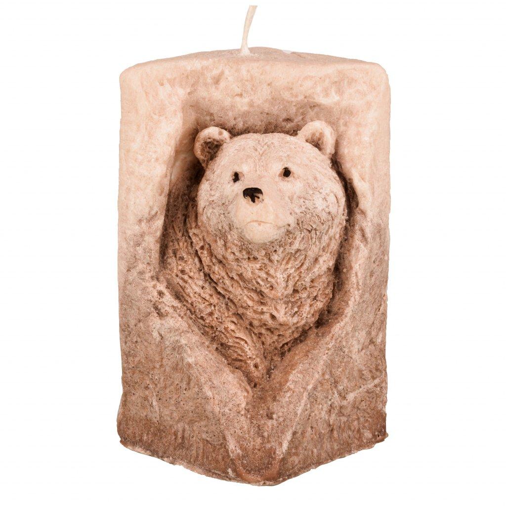 medvěd ve skále hnědá