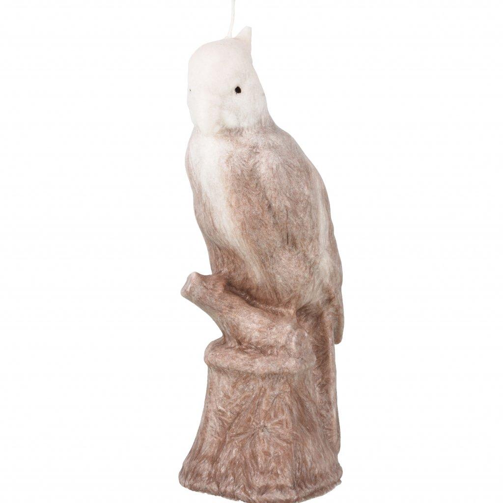 Přírodní vonná svíčka palmová - AROMKA - Papoušek hnědobílý