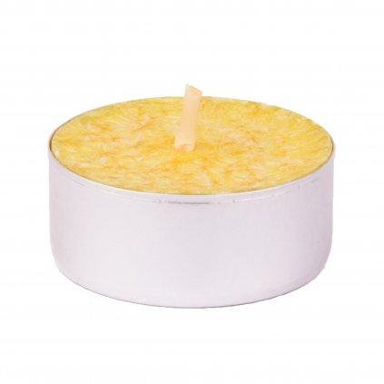 Přírodní vonná svíčka palmová - AROMKA - Set 10 ks čajových svíček v plechu - Měsíček Lékařský