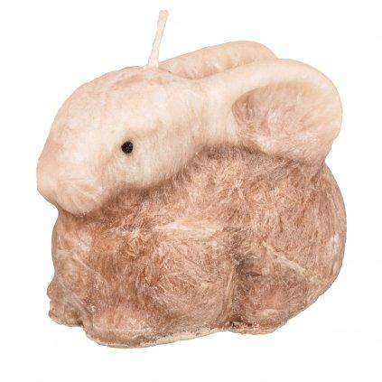 zajíček hnědy