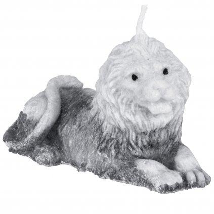 lev šedý