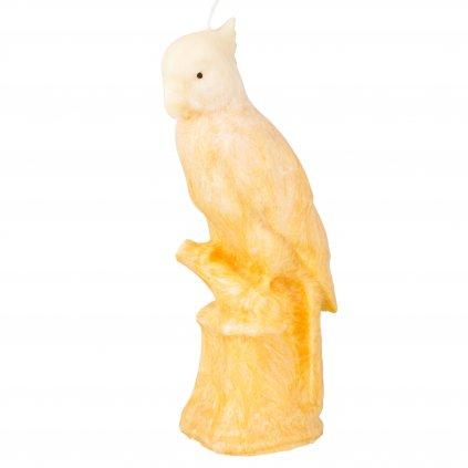 Přírodní vonná svíčka palmová - AROMKA - Papoušek oranžovobílý