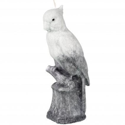 Přírodní vonná svíčka palmová - AROMKA - Papoušek šedobílý