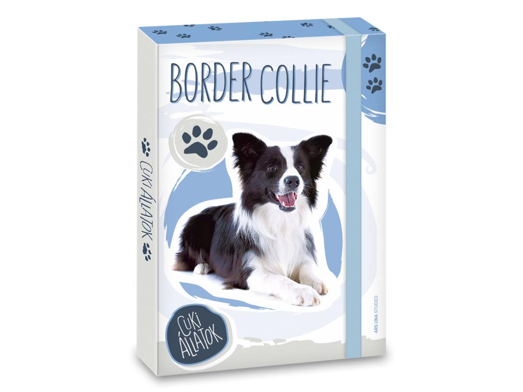 Box na sešity Border Collie A5