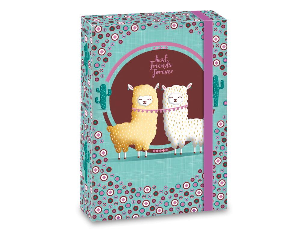 3446 box na sesity best friends a5