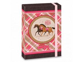 Ars Una Box na sešity Charming Stars koně A5