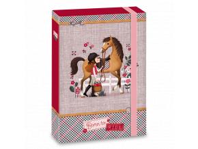 Ars Una Box na sešity Koně Born to ride A4