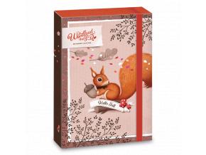 Ars Una Box na sešity Veverka Woodland Magic A4