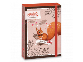 Ars Una Box na sešity Veverka Woodland Magic A5