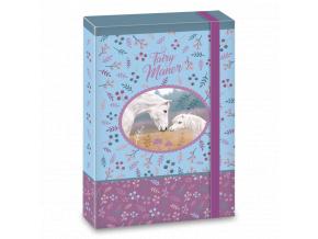 Box na sešity Fairy Manor A5