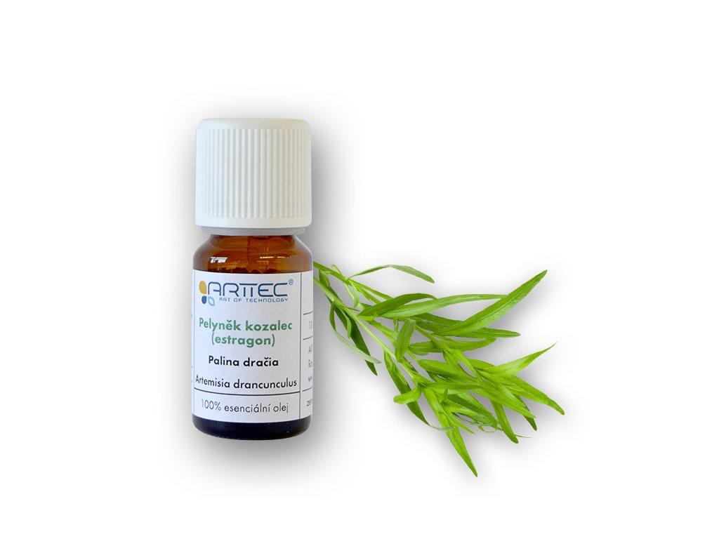 Pelyněk kozalec - estragon de Provence (Artemisia dracunculus), palina dračia