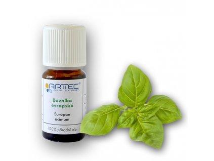 Bazalka evropská (Ocimum basilicum)