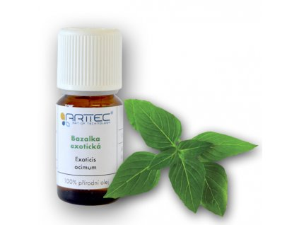 Bazalka exotická bio (Ocimum basilicum)