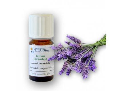 Levandule jemná AOP Haute-Provence bio (Lavandula angustifolia)