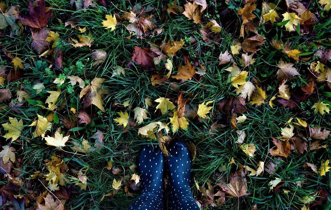 Podzimní čas v Ájurvédě a TČM