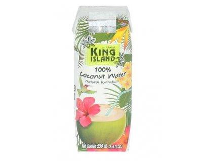 Kokosová voda 100 % 250 ml