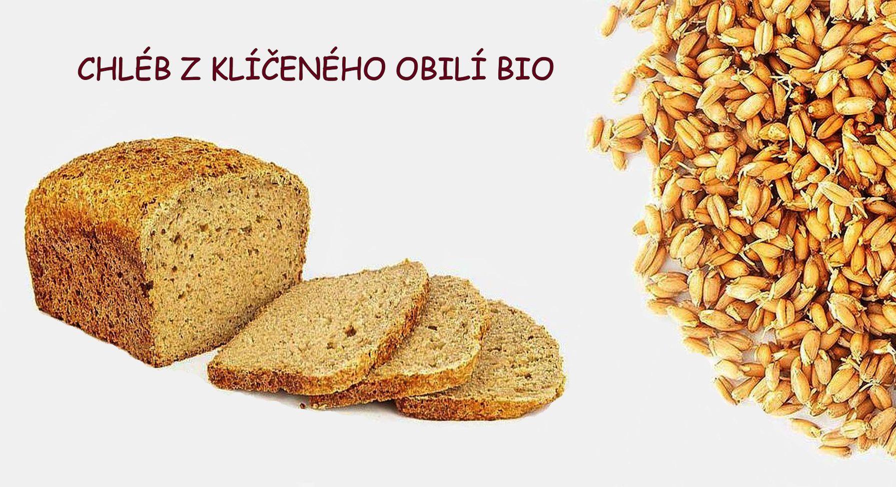 kliceny chleba