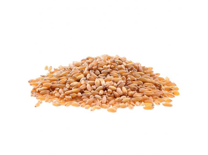 Tvrdá pšenice Bio 1kg
