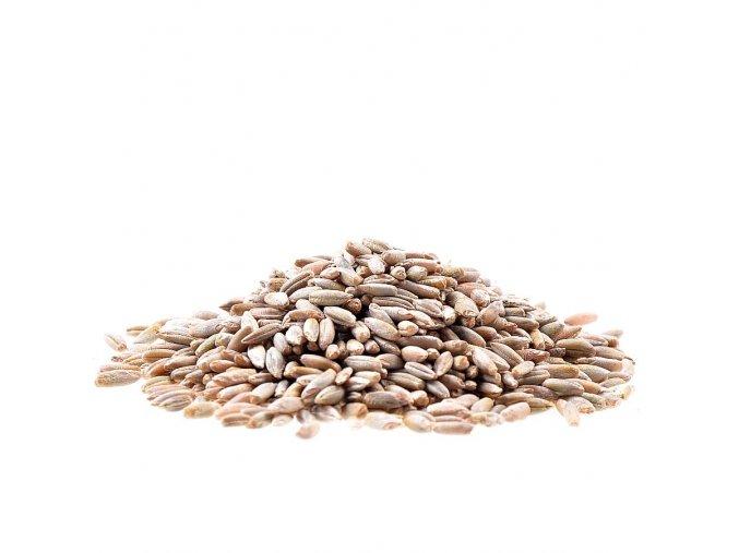 Žito Bio 25kg