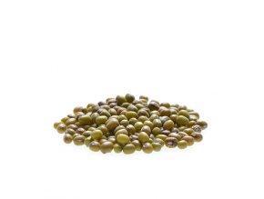 Fazole mungo Bio 500g