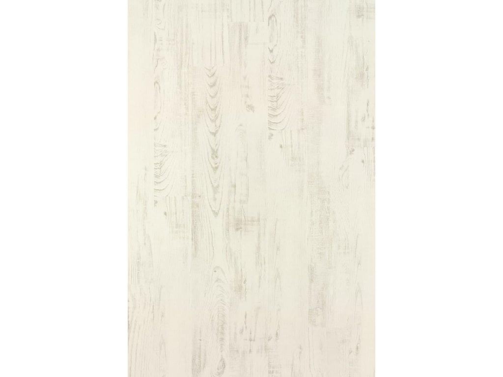 chestnut white 2