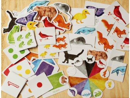 Duhová zvířata - učení barev a čísel