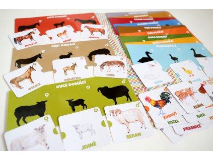 Sada aktivit - Zvířata z farmy a jejich rodinky