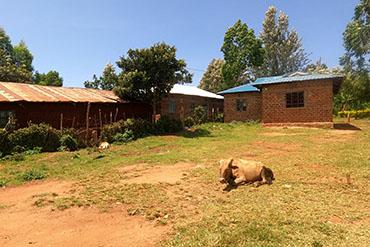 Život v africké vesnici