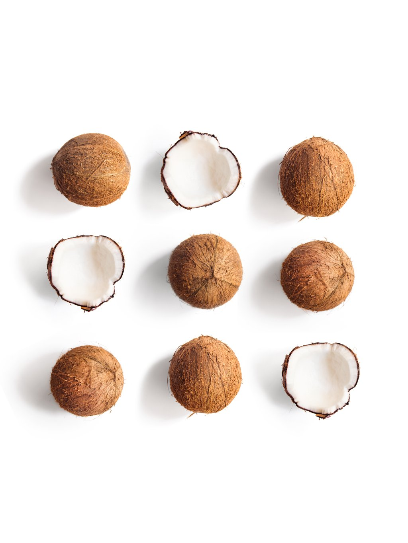 barevny africky plakat coconut 01