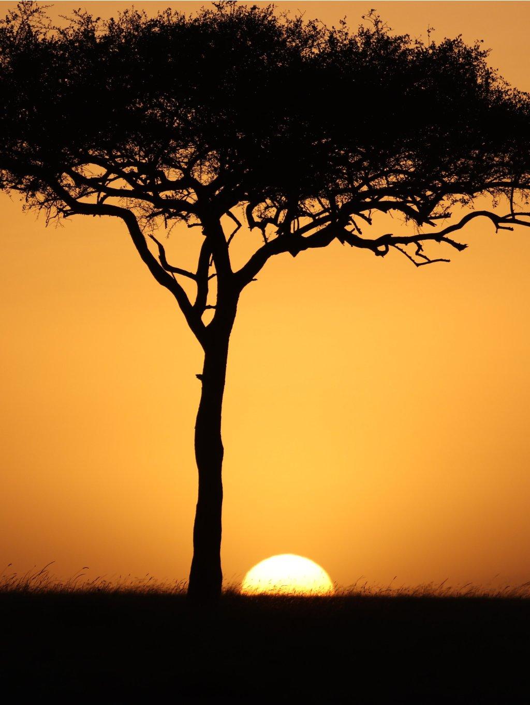 barevny africky plakat masai mara 01