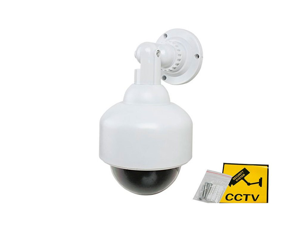 Securia Pro Atrapa Camera PTZ Dome MPC012
