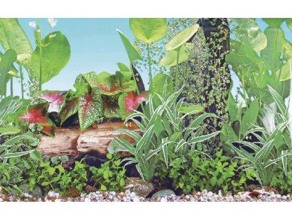 04958 Akvarijní pozadí GRASSY, 49x1500cm
