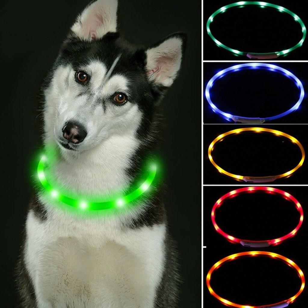 Reedog Easy Light USB dobíjecí svítící obojek pro psy a kočky Barva: Modrá