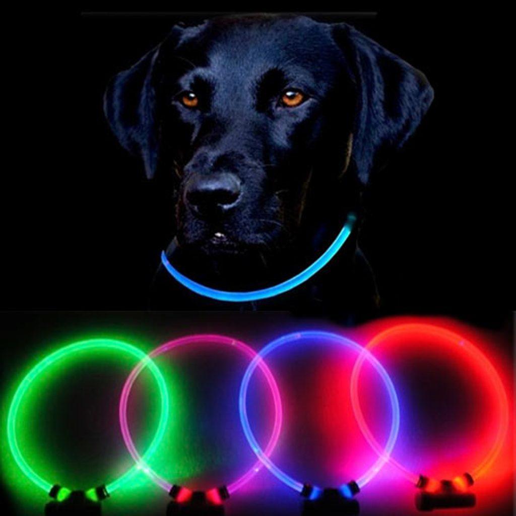 Reedog Full Light USB dobíjecí svítící obojek pro psy a kočky Barva: růžová, Velikost: M