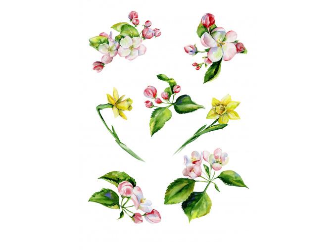 Jarní Ifin