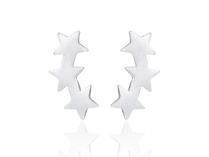 Nausnice hvezdicky3