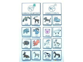 Jiný svět Třídíme: Zvířata volně žijící / Domácí. Strukturované učení