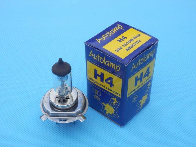 H4 24V