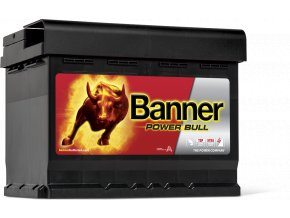013562190101 Power Bull P62 19 DT Web Detail Ansicht