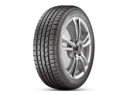Fortune 255/50 R19 FSR303 107V XL