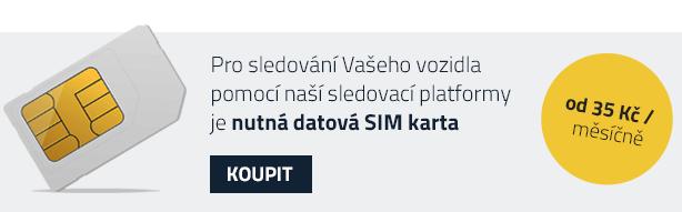 SIM-INFO
