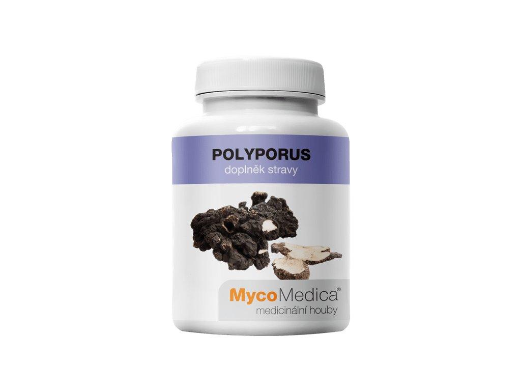 polyporus.1561093504