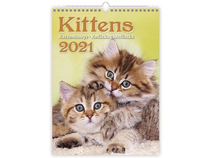 Kalendář  Kočičky