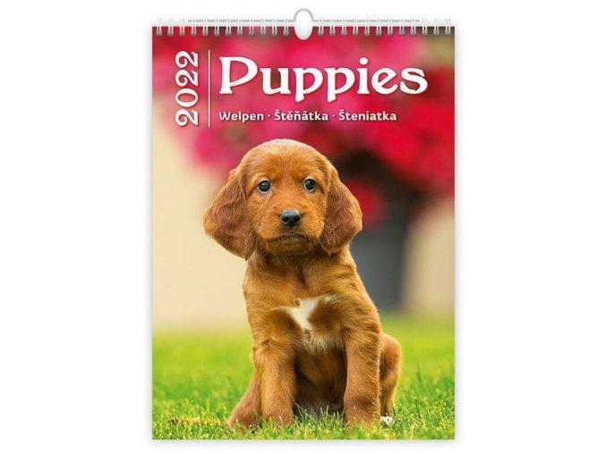 Kalendář Puppies/Welpen/Štěňátka/Šteniatka