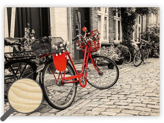 Dřevěný obraz Bicycle