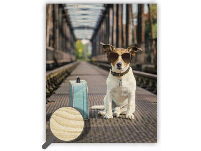 Dřevěný obraz na stěnu Dog s motivem psa