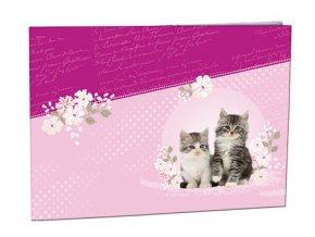 Desky na číslice Kitten
