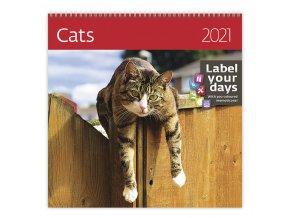 Kalendář Cats