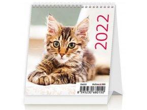 Kalendář Mini Kittens