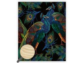 Dřevěný obraz Peacocks